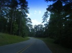 Scenic Winding Road of Homochitto NF